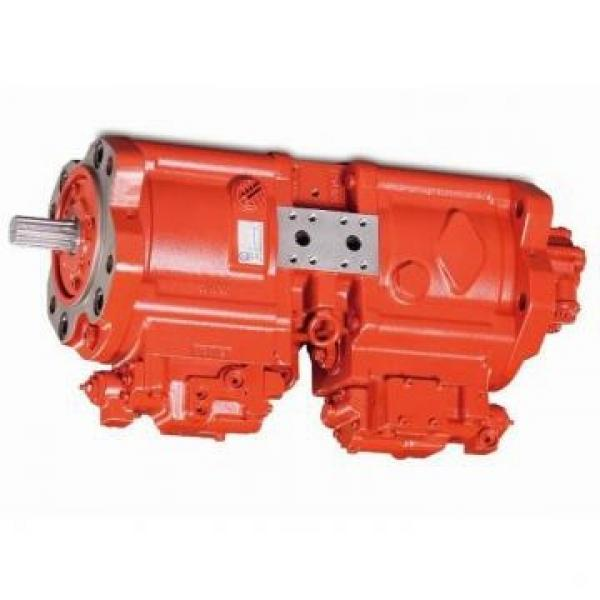 JCB 8032 Hydraulic Final Drive Motor #1 image