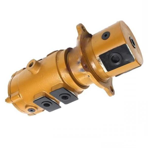 Liugong B0240-93101 Hydraulic Final Drive Motor #1 image